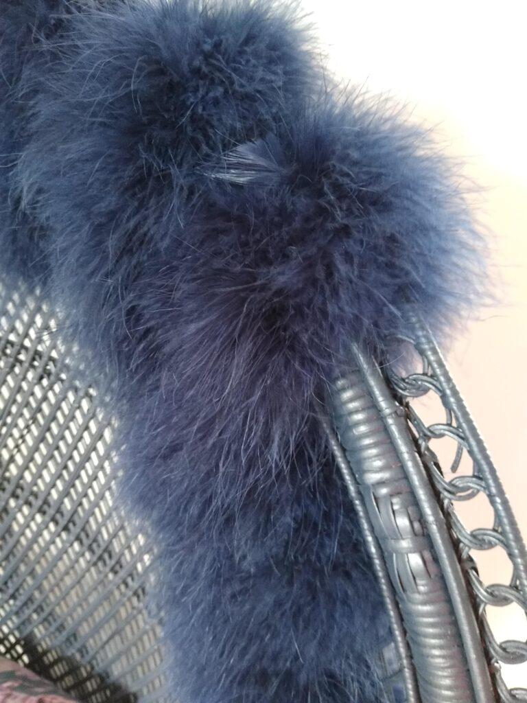 Mayura : Close up feathers